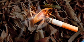Cigarette Butts Can Cause Fires. Please Dispose Carefully.