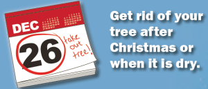 Get rid of your live Christmas tree